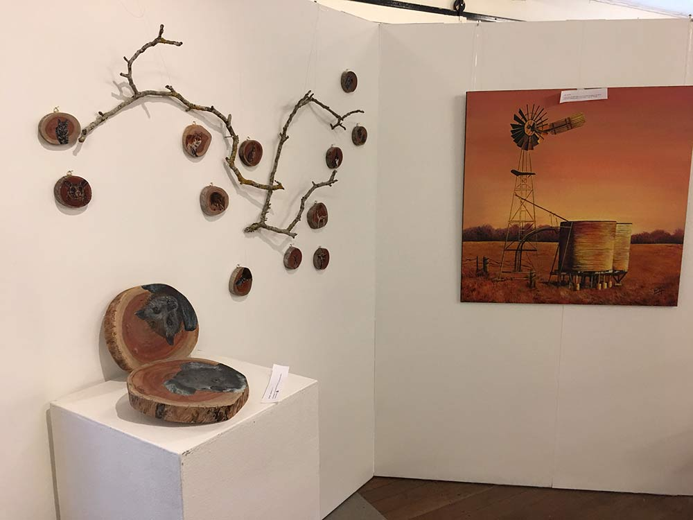 Bright and Savage Land SALA 2017 exhibition. Artworks from Janice Land and Pam Hall, on exhibition until 27 August 2017.
