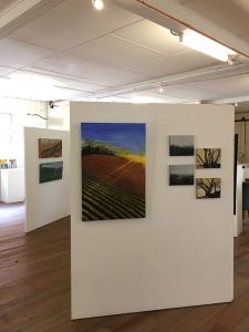 A Bring & Savage Land SALA 2017 Exhibition. Artworks by Paula Robbins, Kendrea Rhodes and Sue Boettcher on exhibition until 27 August 2017